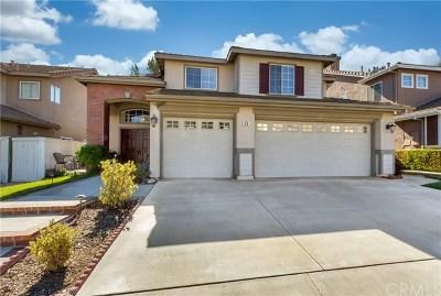Trabuco Canyon Single Family Home For Sale: 36 Apache Drive