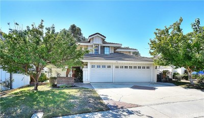 Laguna Hills Single Family Home For Sale: 26691 Westhaven Drive