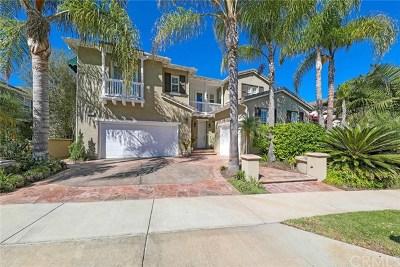 San Clemente Single Family Home For Sale: 4205 Costa Salada