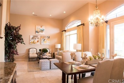 Mission Viejo Single Family Home For Sale: 27098 Pacific Terrace Drive