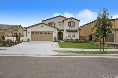Temecula Single Family Home For Sale: 45082 Morgan Heights Road