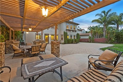 Ladera Ranch Single Family Home For Sale: 46 Hallcrest Drive