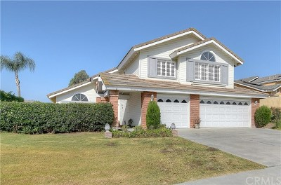 San Juan Capistrano Single Family Home For Sale: 29922 Imperial Drive