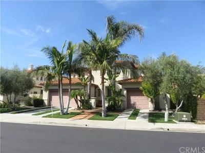 San Juan Capistrano Single Family Home For Sale: 28442 Camino Dimora