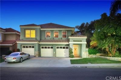 Laguna Hills Single Family Home For Sale: 26671 White Oaks Drive