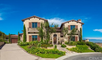 Chino Hills Single Family Home For Sale: 2320 Verona Court