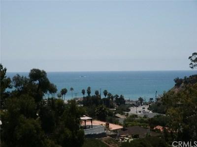 San Clemente Single Family Home For Sale: 408 Calle Vista Torito