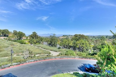 Laguna Niguel Condo/Townhouse For Sale: 30902 Clubhouse Drive #20L