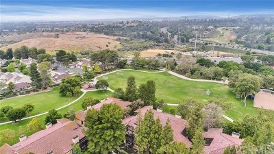 Laguna Hills Condo/Townhouse For Sale: 25541 Indian Hill Lane #P