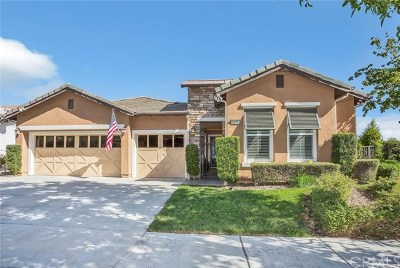 Corona Single Family Home For Sale: 9176 Larkspur Drive