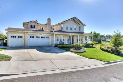 Modjeska Canyon, Silverado Canyon Single Family Home For Sale: 18622 Crystal Canyon