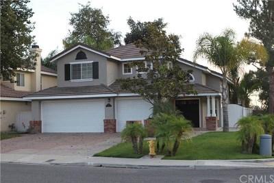 Trabuco Canyon Single Family Home For Sale: 2 Yellowpine Lane