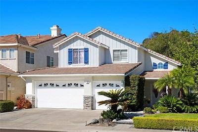 Trabuco Canyon Single Family Home For Sale: 23 Apache Drive