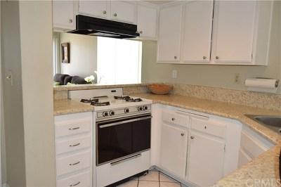 Laguna Niguel Condo/Townhouse For Sale: 25901 Portofino #178