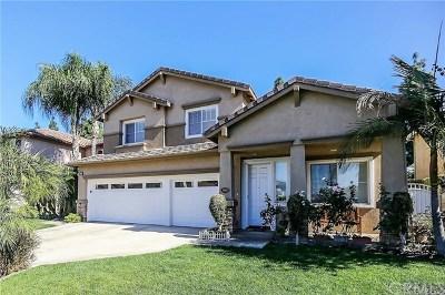 Placentia Single Family Home For Sale: 500 Allison Lane