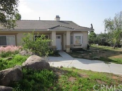 Fallbrook Single Family Home For Sale: 613 Robby Way Road