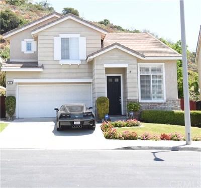 Orange Single Family Home For Sale: 649 N Desert Peach Court
