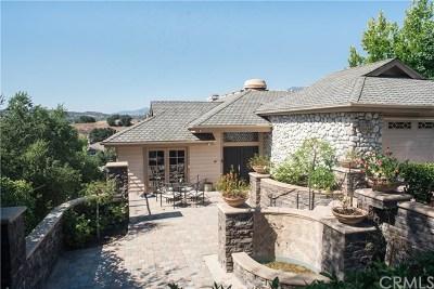 Coto de Caza Single Family Home For Sale: 31711 Via Perdiz