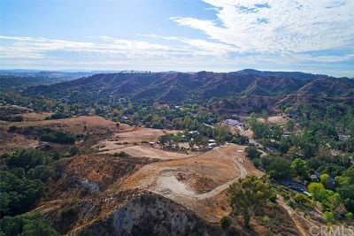 Trabuco Canyon Residential Lots & Land For Sale: 20182 Trabuco Oaks Drive