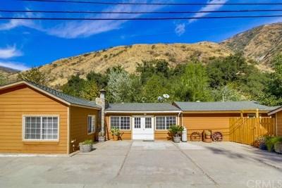 Modjeska Canyon, Silverado Canyon Single Family Home For Sale: 29423 Silverado Canyon Road