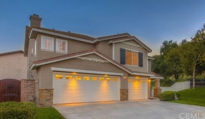 Trabuco Canyon Rental For Rent: 2 Bootstrap Court
