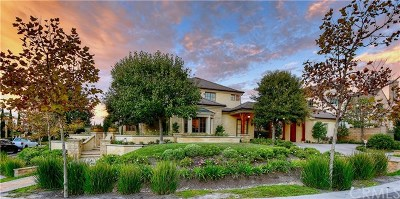 Ladera Ranch Single Family Home For Sale: 20 Fox Hole Road