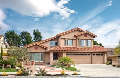 Dana Point Single Family Home For Sale: 32742 Rachel Circle