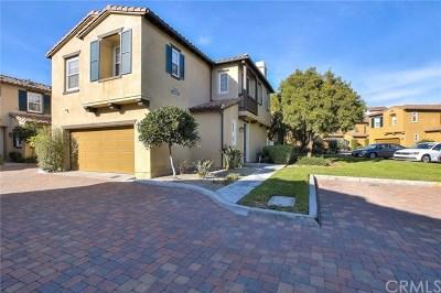 San Clemente Condo/Townhouse For Sale: 13 Paseo Vista