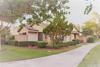 Santa Ana Single Family Home For Sale: 3727 S Sea