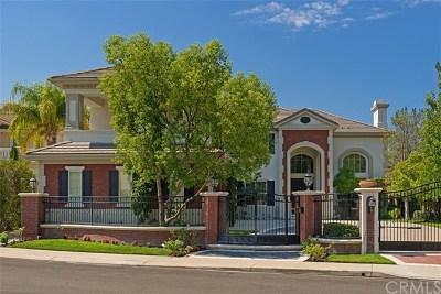 Coto de Caza Single Family Home For Sale: 2 Fremont Lane