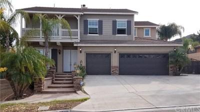 Corona Single Family Home For Sale: 1708 Paseo Vista Street