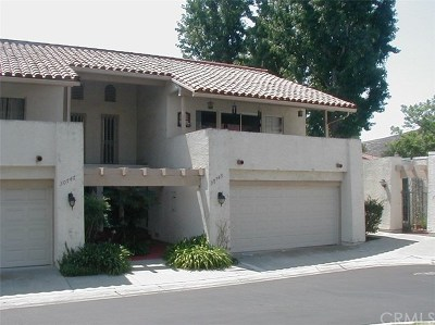 San Juan Capistrano Single Family Home For Sale: 30745 Calle Chueca