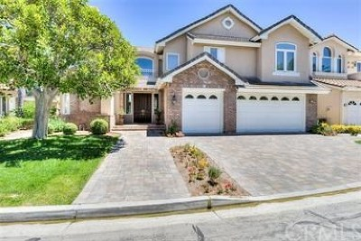 Rancho Santa Margarita Single Family Home For Sale: 8 Sawmill