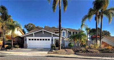 Mission Viejo Single Family Home For Sale: 28922 De La Luna Drive