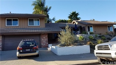 Mission Viejo Single Family Home For Sale: 25781 Santo Drive