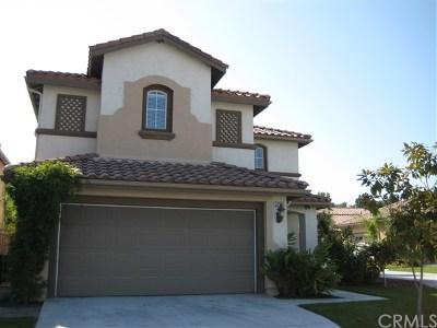 San Juan Capistrano Single Family Home For Sale: 32561 Del Zura
