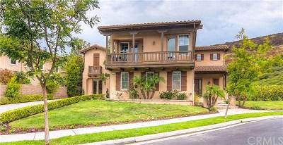 San Clemente Single Family Home For Sale: 2919 Canto De Los Ciervos