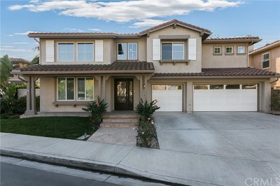 Irvine Single Family Home For Sale: 24 Vienne