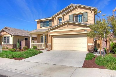 Lake Elsinore Single Family Home For Sale: 29538 Major League