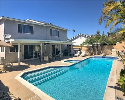 Mission Viejo Single Family Home For Sale: 22662 La Quinta Drive