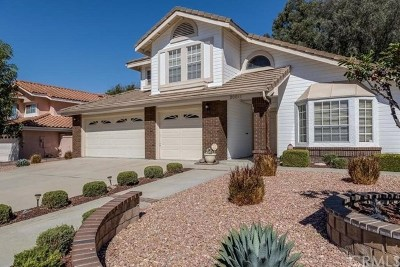 San Juan Capistrano Single Family Home For Sale: 30011 Imperial Drive