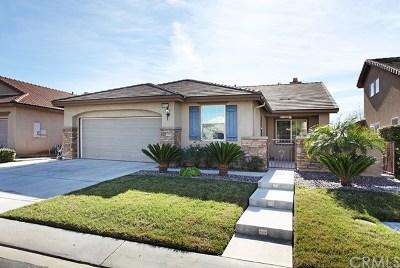 Menifee Single Family Home For Sale: 29713 Tierra Shores Lane