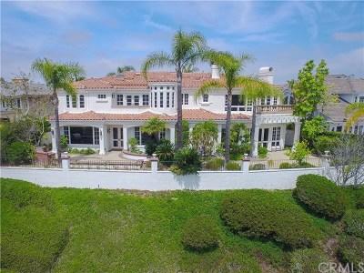 Irvine CA Single Family Home For Sale: $3,999,000