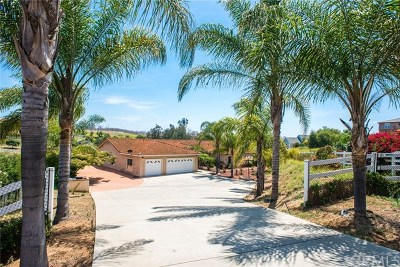 Fallbrook Single Family Home For Sale: 1797 Camino De Nog