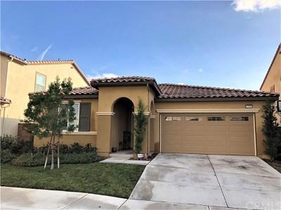Lake Elsinore Single Family Home For Sale: 53203 Monaco Street