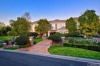 Coto De Caza Single Family Home For Sale: 2 Willow View Lane