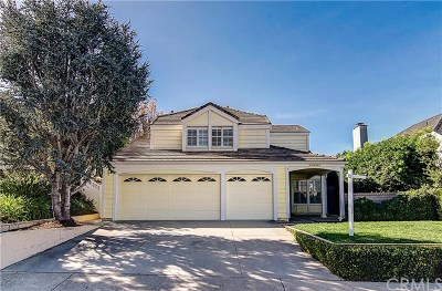 Laguna Hills Single Family Home For Sale: 24631 Paige Circle