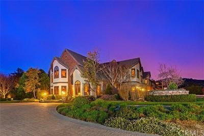 Coto De Caza Single Family Home For Sale: 31372 Trigo