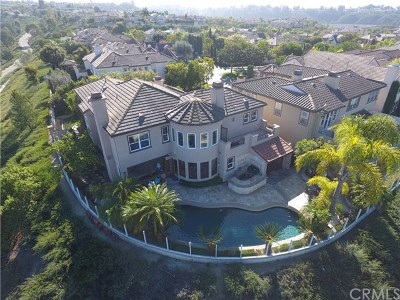 Newport Coast Single Family Home For Sale: 1 Rochelle