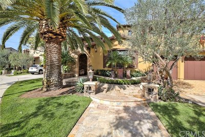 Pienza (Prpz) Single Family Home For Sale: 5 Wayside